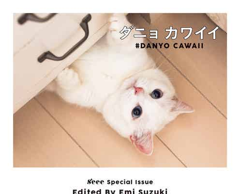"""鈴木えみの真っ白猫""""ダニョ""""が可愛すぎて身もだえ!専用インスタにラブコール殺到"""