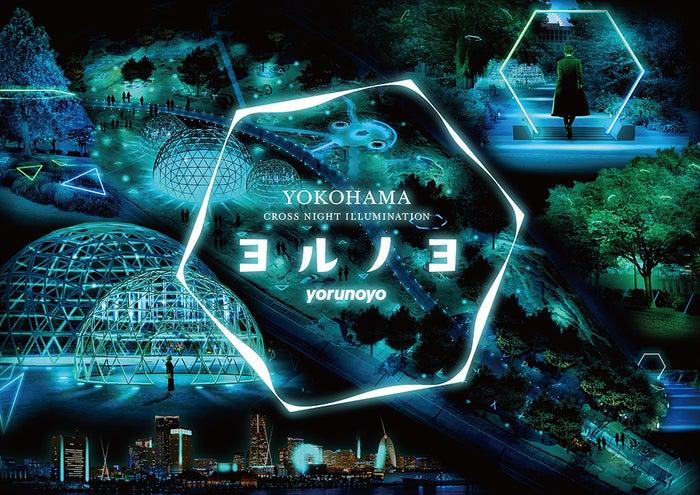 ヨルノヨ-YOKOHAMA CROSS NIGHT ILLUMINATION-(提供画像)