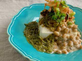 macaroniスタッフの料理リレー #10 【管理栄養士のリアル。編集部員Oの「だるい日」ごはん】