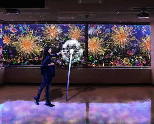 佐賀×ネイキッドの夜歩きイベント開催、県庁と佐賀城公園に光のアート展示