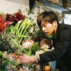 モデルプレス - 田中圭&岡崎紗絵で恋愛群像エンターテイメント 映画「mellow」公開決定