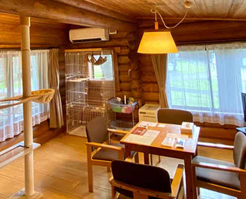 軽井沢プリンスホテル「キャットコテージ」愛猫と泊まれる一棟貸切コテージが新設