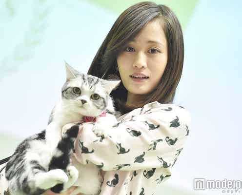 """前田敦子""""顔が似ている?""""愛猫と登場 指原莉乃との偶然も告白"""