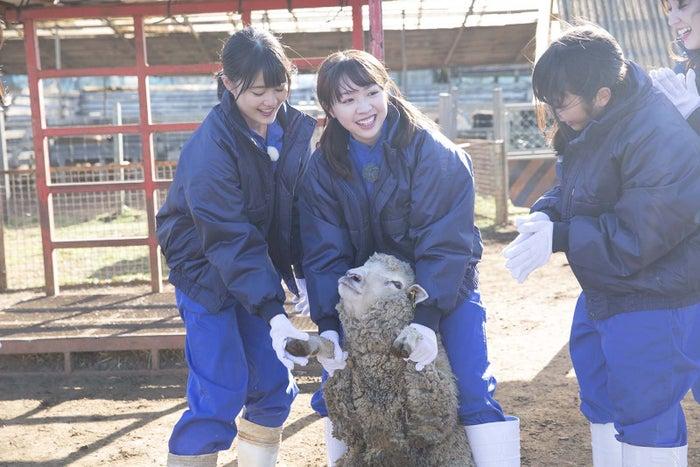 番組の様子(写真提供:NHK)