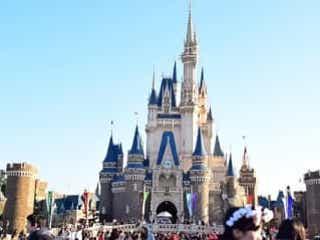 毎年11月14日のディズニーは埼玉県民で溢れる? 番組の検証企画が話題に 『秘密のケンミンSHOW 極』は埼玉県特集。県民の日の過ごし方がネットで話題となった。