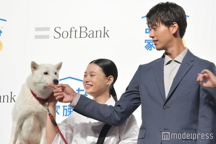 (左から)お父さん犬、杉咲花、竹内涼真 (C)モデルプレス