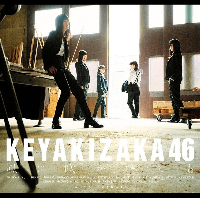 欅坂46・5thシングル『風に吹かれても』初回盤C(提供写真)