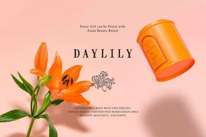 DAYLILY/画像提供:寸草股份有限公司