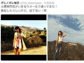 ダレノガレ明美が、自分に憧れるアイドルを「似てない」とTwitterで一刀両断