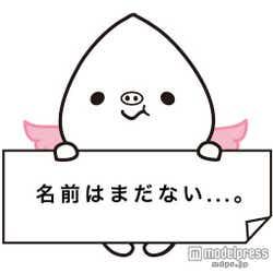 ゆるキャラ x おねぇが合体 新キャラクターの名付け親に夢の国1日デート券をプレゼント
