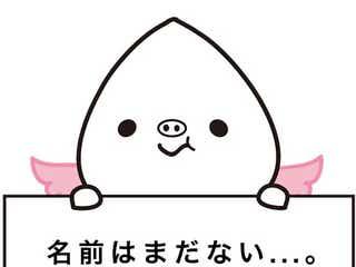 ゆるキャラ x おねぇが合体 新宿2丁目公認キャラが誕生か?