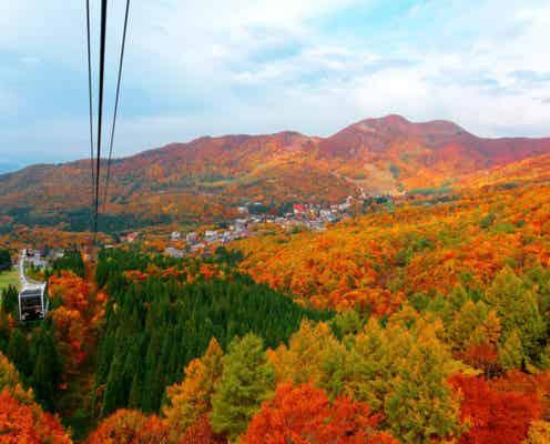 今まさに見頃です!この秋おすすめ「全国の絶景紅葉スポット」5選