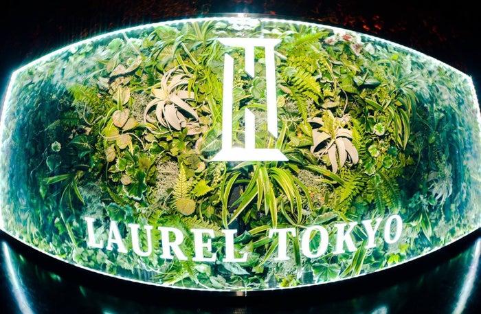LAUREL TOKYO/画像提供:LAUREL TOKYO