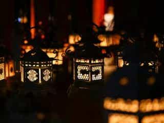 【11月は奈良へ】毎週末足を運びたくなる秋夜の催しをチェック