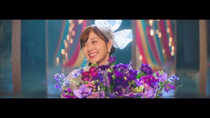 白石麻衣/乃木坂46「しあわせの保護色」Music Videoより(提供写真)