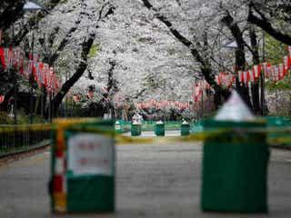 東京都の新規感染者110人以上、初の3桁=国内メディア