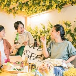 星野リゾート「BEB5 軽井沢」で「黄色いお花見ステイ」1室限定の花咲く特別ルームで屋内花見