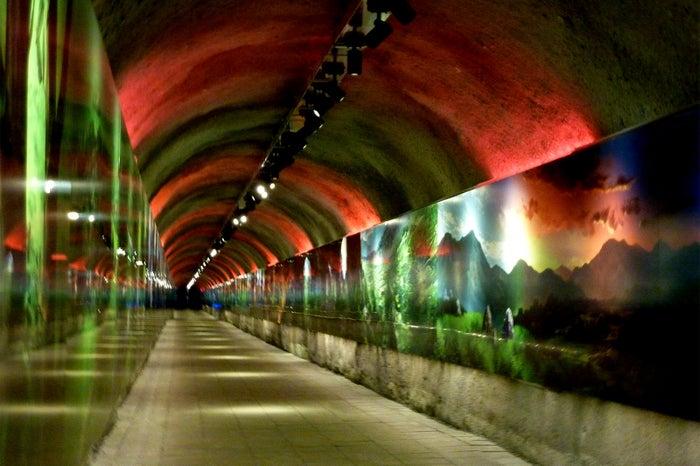 3億年のタイムトンネルはまるでアートのストリート/提供画像 (C)モデルプレス