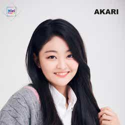 AKARI(アカリ) (提供写真)