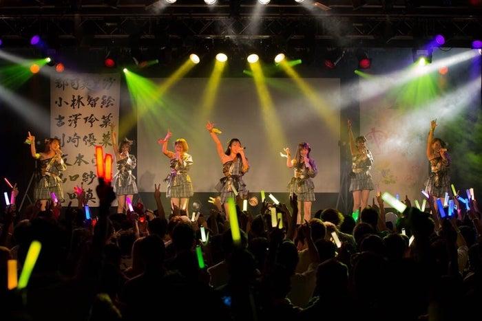 Pimm's「5thワンマンライブ『花』~努力の分だけ花が咲く~」より(画像提供:所属事務所)