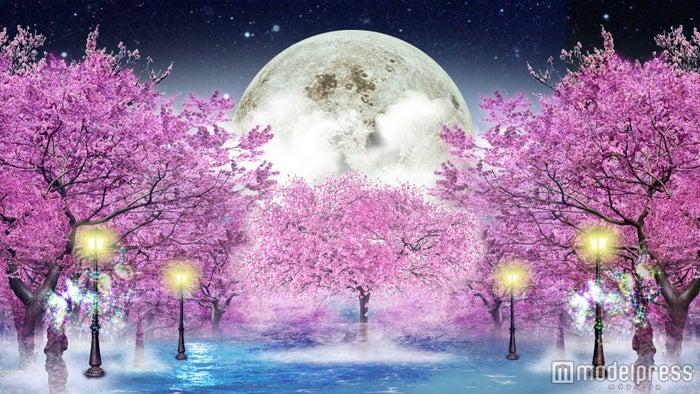 左側壁面イメージ:「夜桜と月光」イメージ/画像提供:東急不動産SCマネジメント