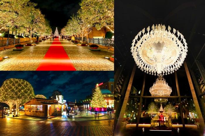 「恵⽐寿ガーデンプレイスウインターイルミネーション2019」昨年の様子/画像提供:恵比寿ガーデンプレイス広報事務局