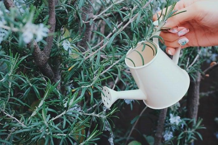 【運命の恋が訪れる前兆5】自分の大切にしていた物が壊れる/photo by GIRLY DROP