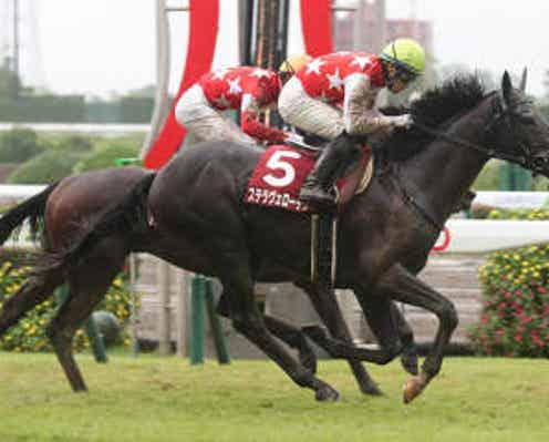 【菊花賞】ステラヴェローチェ506kg、オーソクレース472kg 調教後の馬体重