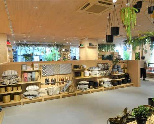 杉田エース 銀座に飲食店併設のライフスタイルショップ