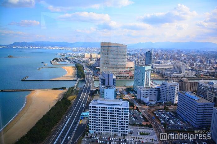 福岡タワーから見た市街地(C)モデルプレス