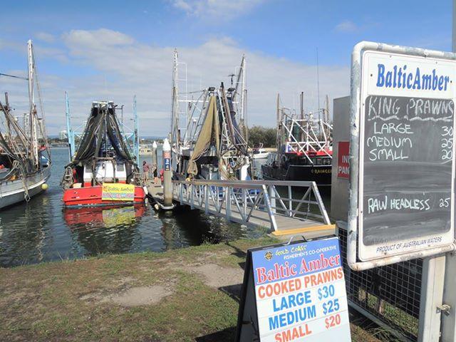 船が魚介類の直売所になっている「フィッシャーマンズコーポレイティブ」(参加者撮影)