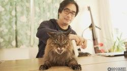 ネコ派の向井理、ちょっと泣きそうに…『ネコメンタリー』岸政彦と18歳の愛猫にスポット