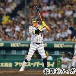 プロ野球がいよいよ開幕に向け動きだす! 阪神タイガースの練習試合を甲子園球場から生中継!!