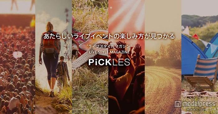 フェスが今よりもっと楽しくなる「PiCKLES」