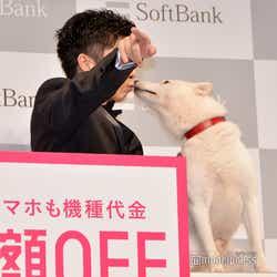 田中圭にキスを連発する白戸家のお父さん(C)モデルプレス
