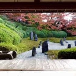 京都の人がこっそり教える「一度は見るべき秋の絶景」