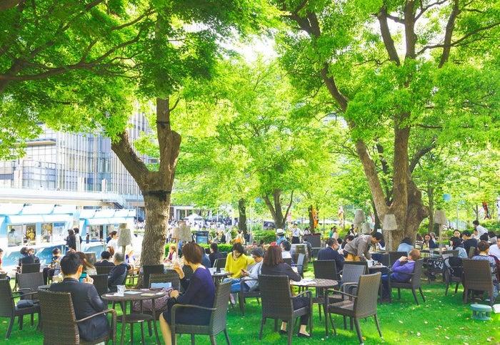 ミッドパーク ラウンジ/画像提供:東京ミッドタウンマネジメント