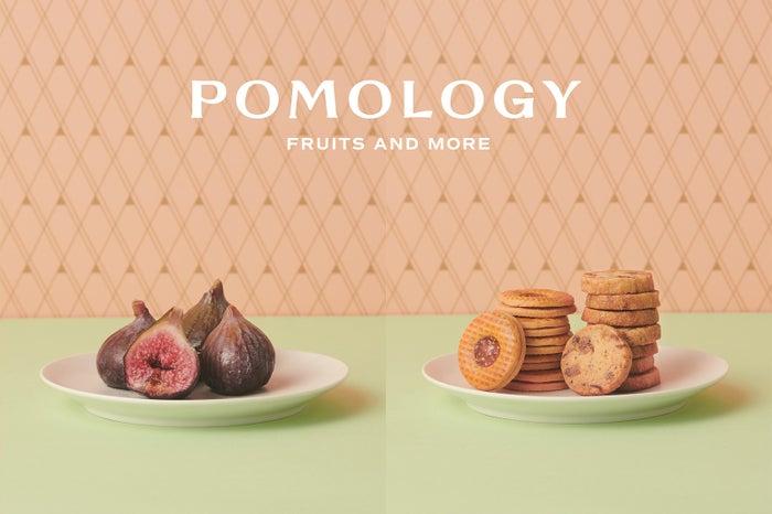 POMOLOGY/画像提供:三越伊勢丹ホールディングス