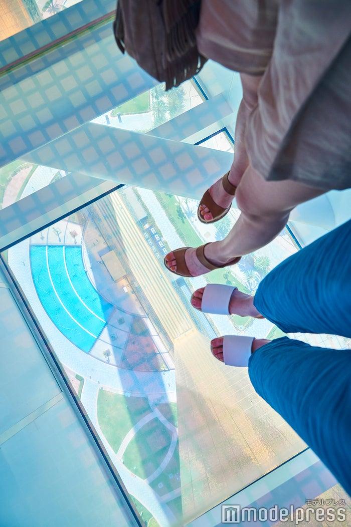 ガラス張りの床に思わず足がすくむかも(C)モデルプレス