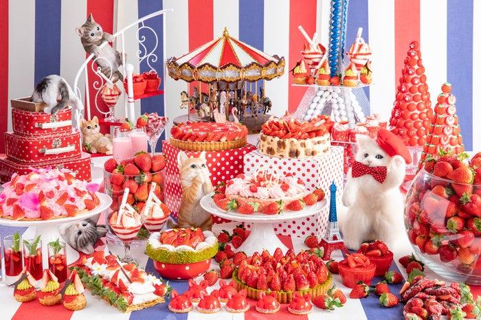 悶絶キュートな猫×いちごのデザートビュッフェ「ストロベリーCATSコレクション」/画像提供:ヒルトン東京