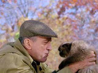こんニャに芸達者!ハリウッドも魅了した猫アクターたち【猫の日企画】