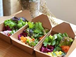 """『八芳園』がはじめた""""本気のデリカテッセン""""とは? 魅力は味わい濃厚で力強い「自然栽培野菜」"""