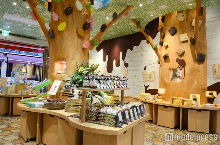 チョコレートの森が広がる店内(C)モデルプレス