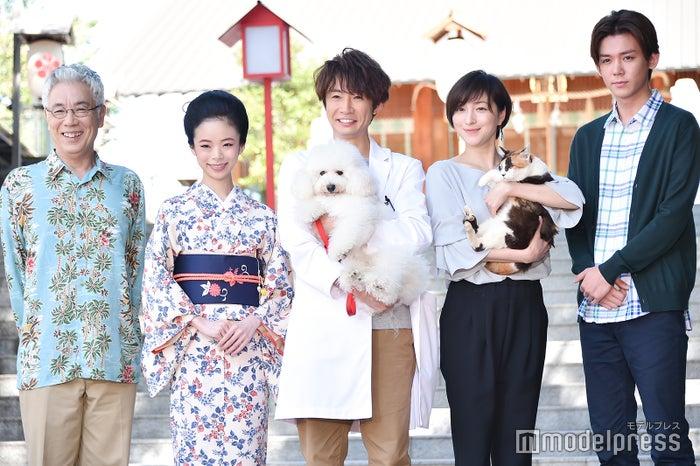 (左から)イッセー尾形、趣里、相葉雅紀、広末涼子、小瀧望(C)モデルプレス