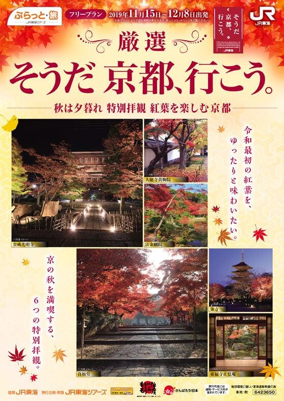 そうだ 京都、行こう。ー秋は夕暮れ 特別拝観 紅葉を楽しむ京都ー(提供元:株式会社ジェイアール東海ツアーズ)