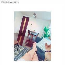 近藤千尋、自宅リビング公開に反響 ジャンポケ太田との幸せ新婚生活が羨望の的