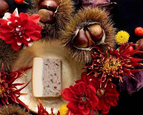 【ダイエットにぴったり】グルテンフリーの「新作チーズテリーヌ」が登場!