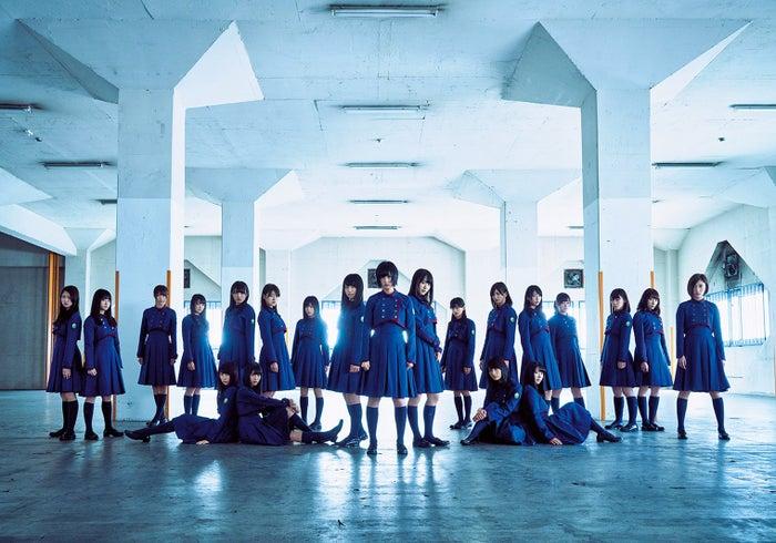 欅坂46 (提供写真)