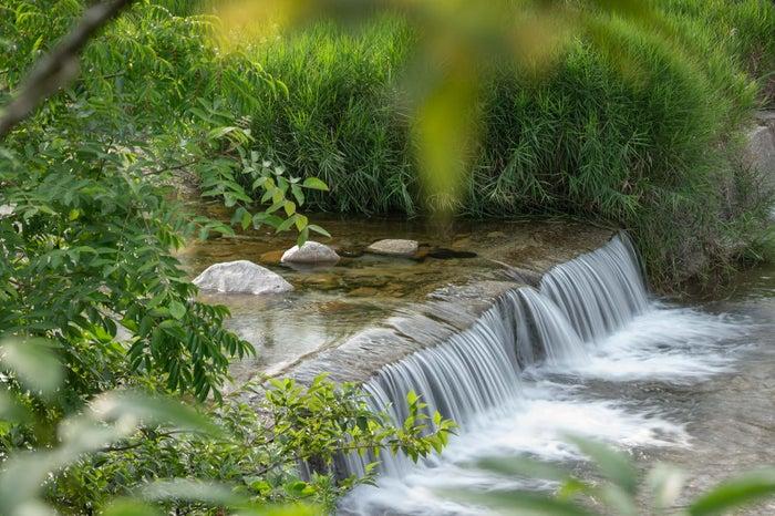 湯の山 素粋居/画像提供:アクアイグニス