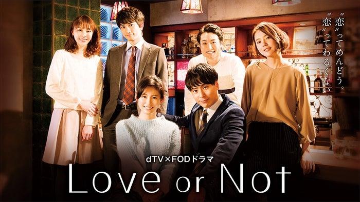 ドラマ「Love or Not」/(C)エイベックス通信放送/フジテレビジョン